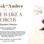 salim-zerrouki-illustration-exposition-life-circus-musk-amber-5