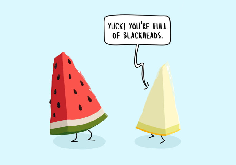 salim-zerrouki-illustration-algerie-ta7richa-watermelon-melon