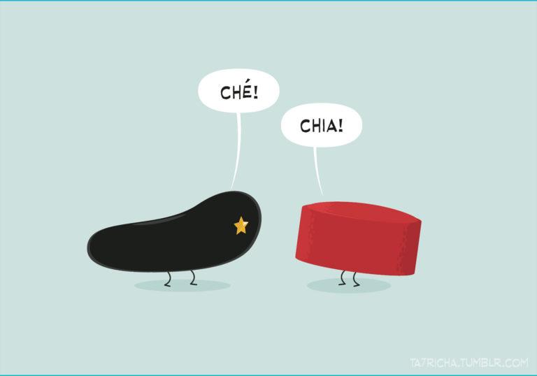 salim-zerrouki-illustration-algerie-ta7richa-che-chechia